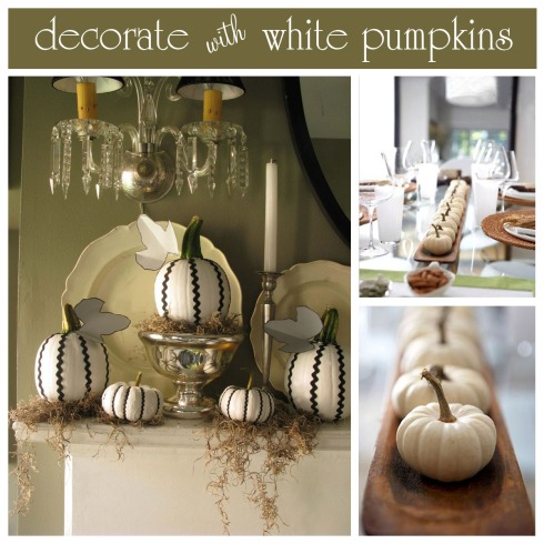 White-Pumpkins-large